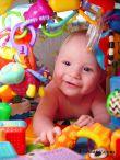 baby-persianv_(2)_w.jpg