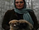 بازیگران سینما ایران و بازی با حیوانات خانگی شان