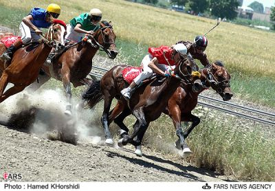 عکس : جشنواره اسب اصيل تركمن