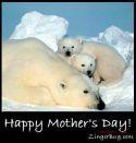 گالری عکس برای روز مادر
