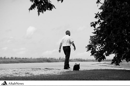 عکسهای دیدنی سگهای رئیس جمهورهای آمریکا