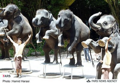 عکس : باغ وحش دیدنی در كشور تايلند