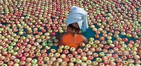 عکس دیدنی : شنای یک دختر در استخر سیب