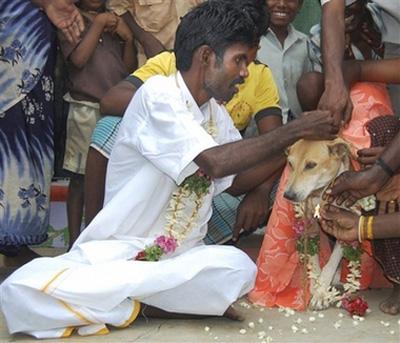 عکس : ازدواج با یک سگ برای کفاره گناهان !