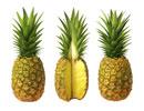 تزیین آناناس به شکل طوطی
