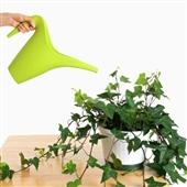 آشنایی با 10 نکته مهم در نگهداری از گیاهان آپارتمانی