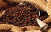 آشنایی با 10 کاربرد قهوه در خانهداری