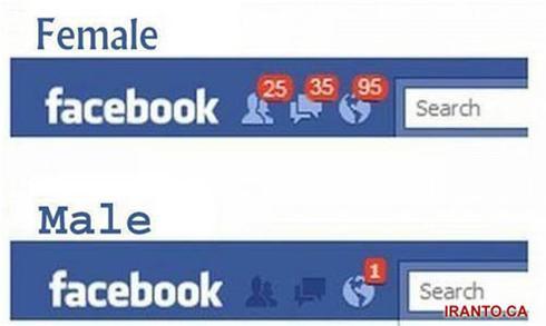 عکس:فیس بوک زنانه - فیس بوک مردانه!