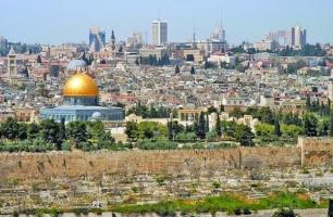 عکس : بیت المقدس و باغ ها و برج های اطراف
