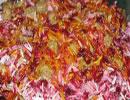 غذایی به رنگ ارغوان
