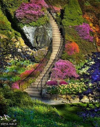 تصاویر دیدنی: زیباترین باغ دنیا