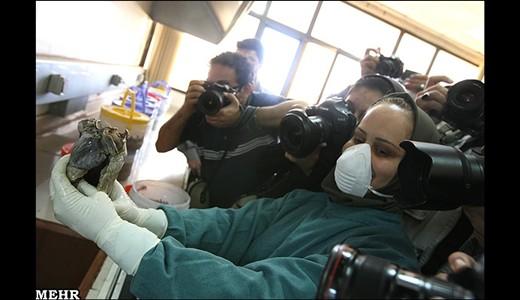 تصاویری عجیب و کمیاب از کار پزشکی قانونی