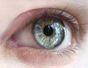 چشم ها چه می گویند؟