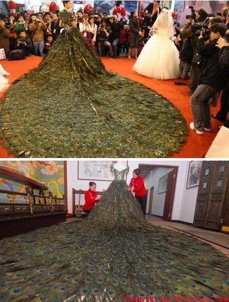 گرانترین لباس عروس دنیا از پرهای طاووس + عکس