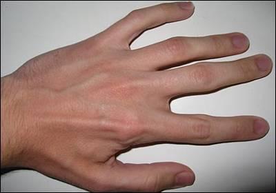 شخصيت شناسي دست و ناخن
