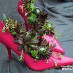 دکوراسیون با گیاهان کاکتوس به شکل ابتکاری و بسیار جالب! +عکس