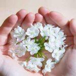 آنچه باید درباره اهمیت صدقه دادن بدانید