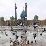 نتیجه توسل به امام زمان (ع ) در مسجد جمکران