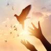 دعای مجرب برای گشایش در کارها و رفع گرفتاریهای زندگی
