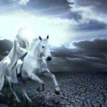 وقایع بعد از ظهور/ بعد از ظهور امام زمان چگونه به شهادت میرسند