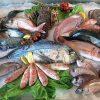 آبزیان دریایی حرام گوشت را بشناسید|خوردن آبزیان دریایی در روایات