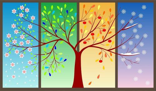 نماز و فصل های سال