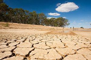 راهکارهای قرآنی شگفت انگیز برای رفع خشکسالی