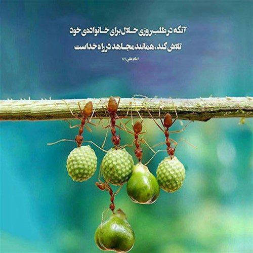 کسی که به دنبال روزی حلال باشد چه پاداشی در انتظار اوست؟