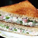 چهار ساندویچ پیشنهادی برای پیکنیک