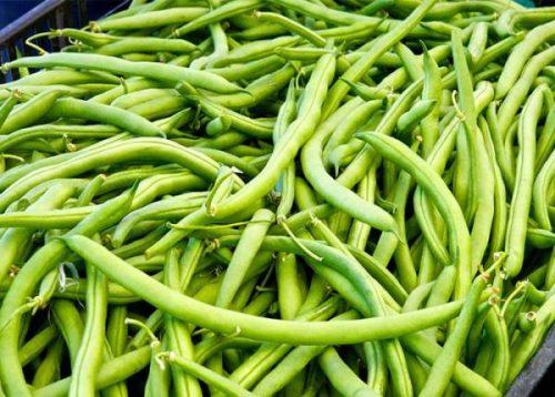 ترشی لوبیا سبز