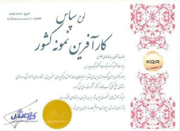 سیدمحمدهادی طلوعی ، کارآفرین برتر کشور