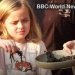 آنجلینا جولی و فرزندانش در حال خوردن عنکبوت و عقرب! + تصاویر