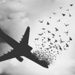 تسلیت چهره ها در پی سقوط هواپیمای مسافربری تهران – یاسوج (۲)