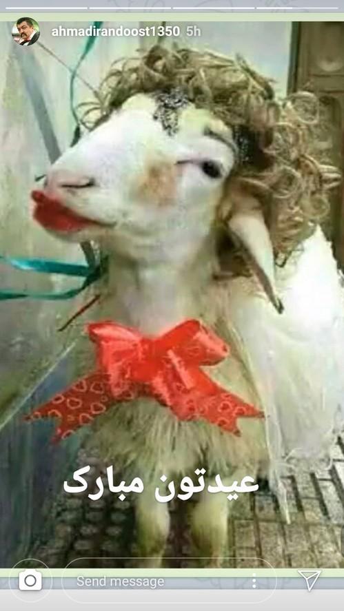 اینستاگرام هنرمندان (88) از تیپ جالب لیلا اوتادی در اصفهان تا توصیه های جالب پریناز ایزدیار برای حیوانات!!!