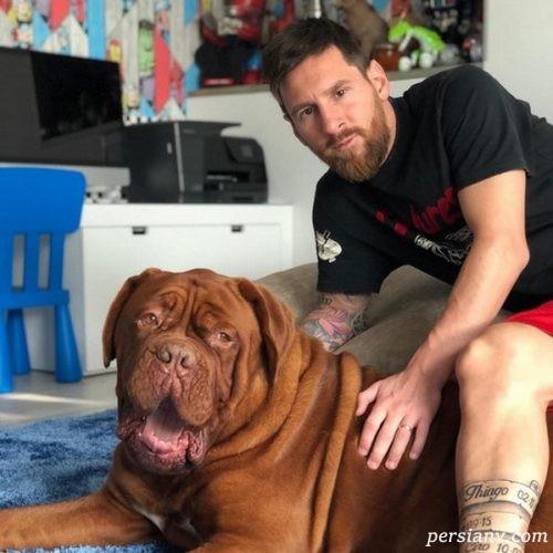 ورزشکاران در شبکه های اجتماعی (۳۷) از سگ سواری مسی تا ماشین سواری علی علیپور!