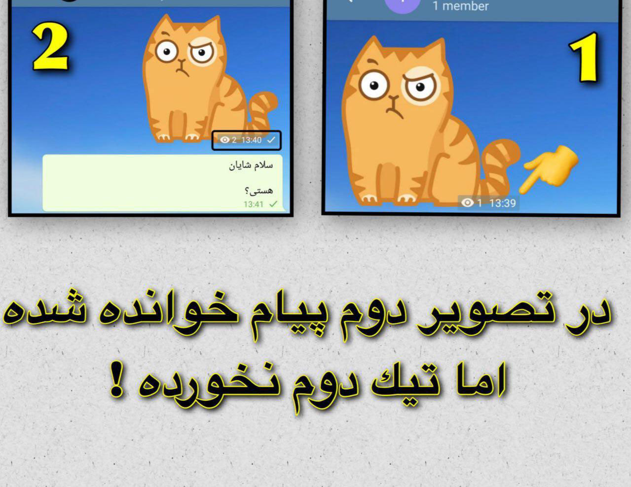 مچ گیری در تلگرام