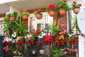 گلخانه پاییزی آپارتمان شما