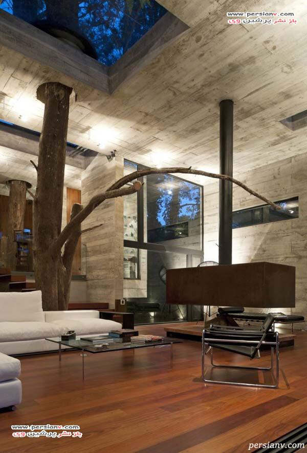 درخت در دکوراسیون داخلی