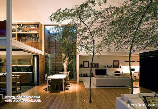 فضای سبز در منزل