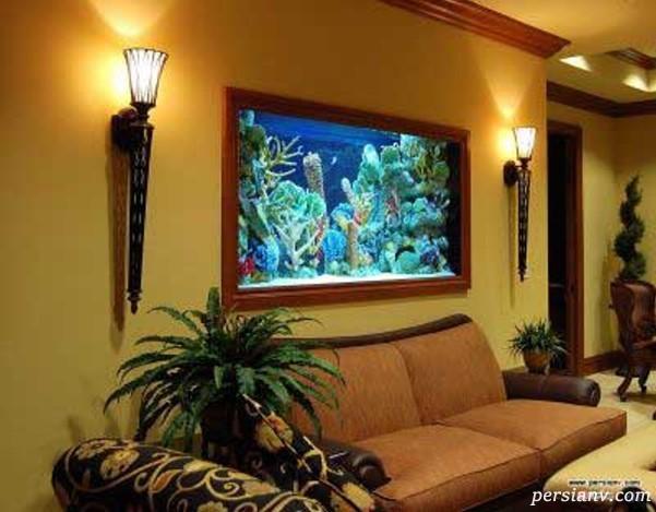 آکواریوم های زیبا و مدرن در خانه داشته باشیم