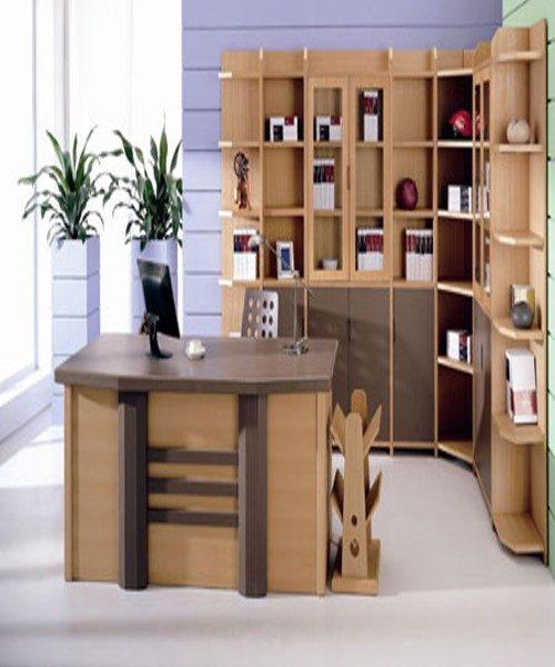 جدیدترین طراحی دکوراسیون داخلی اتاق کار+ تصاویر