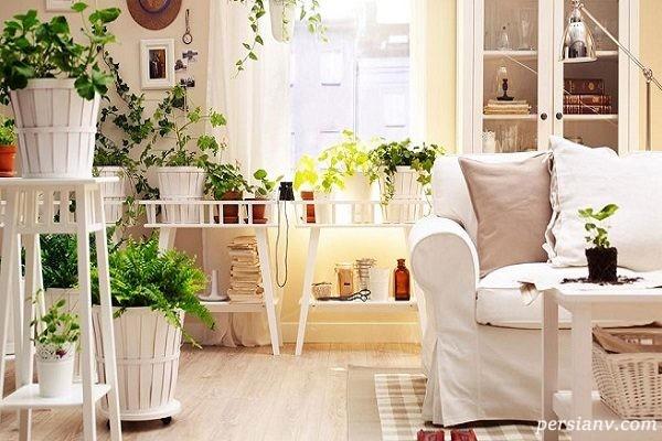 انرژی مثبت در منزل