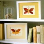 با این دکوراسیون پروانه ای بسیار زیبا فضای خانه خود را تابستانی کنید + تصاویر