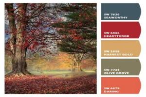 ترکیب رنگ های تند پاییزی برای یک دکوراسیون داخلی جذاب +تصاویر