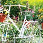 تزئین حیاط خانه و باغچه با دوچرخه و گلدان گل+تصاویر