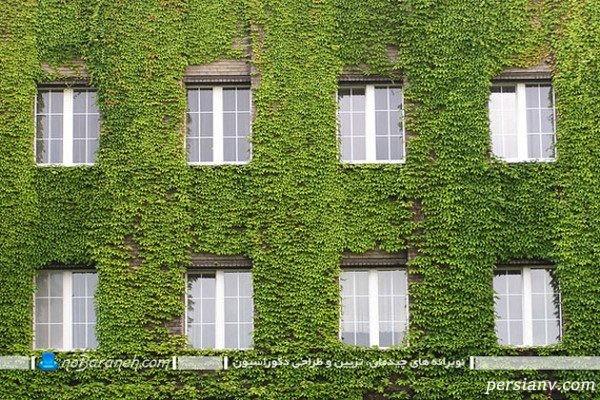 تزیین نمای بیرونی ساختمان