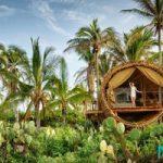 دکوراسیون بی نظیر یک کلبه جنگلی از جنس بامیو در مکزیک+تصاویر