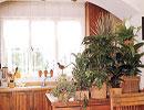 چطور آشپزخانه سبز داشته باشیم؟