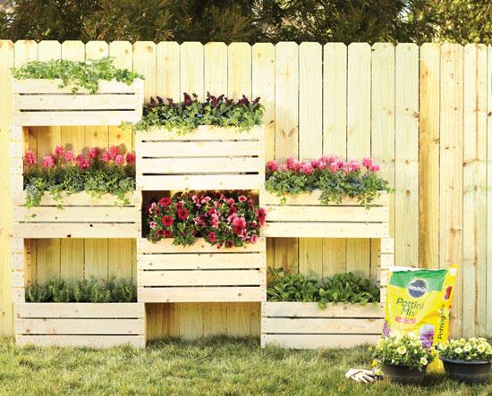 باغچه دیواری بسازید+ تصاویر