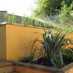 تکنیک های رنگ آمیزی دیوار حیاط برای تابستان